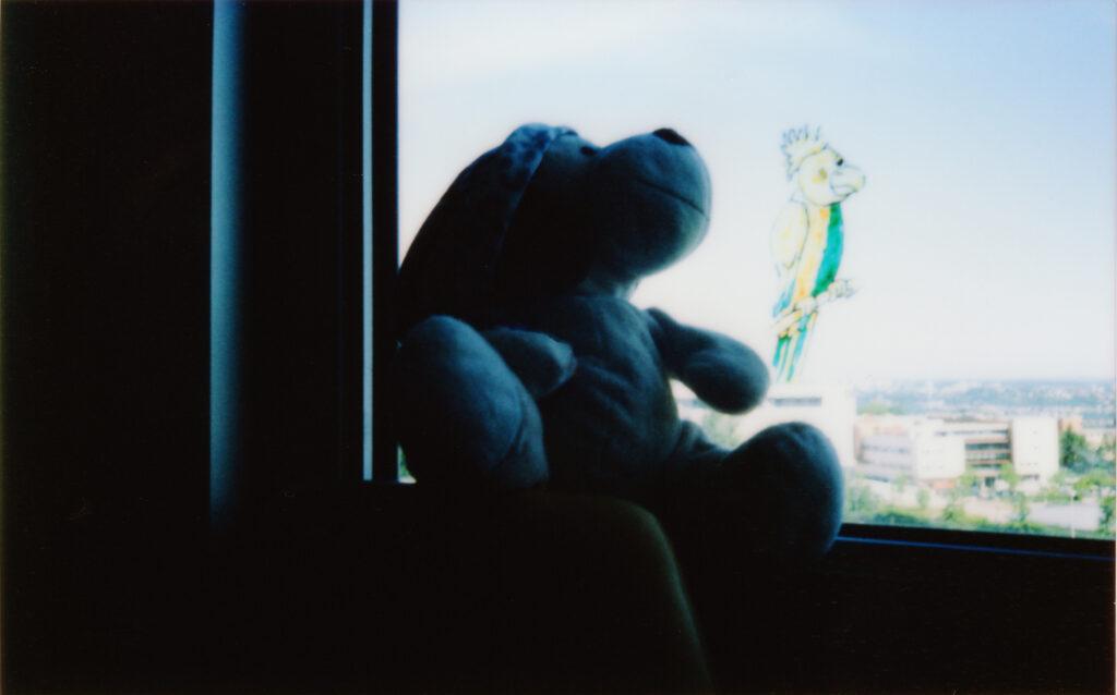 Atelier Voyage au centre de ma chambre Alice Meyer Culture à l'hôpital 2013